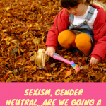 Sexism, gender neutral…are we going a little too far?