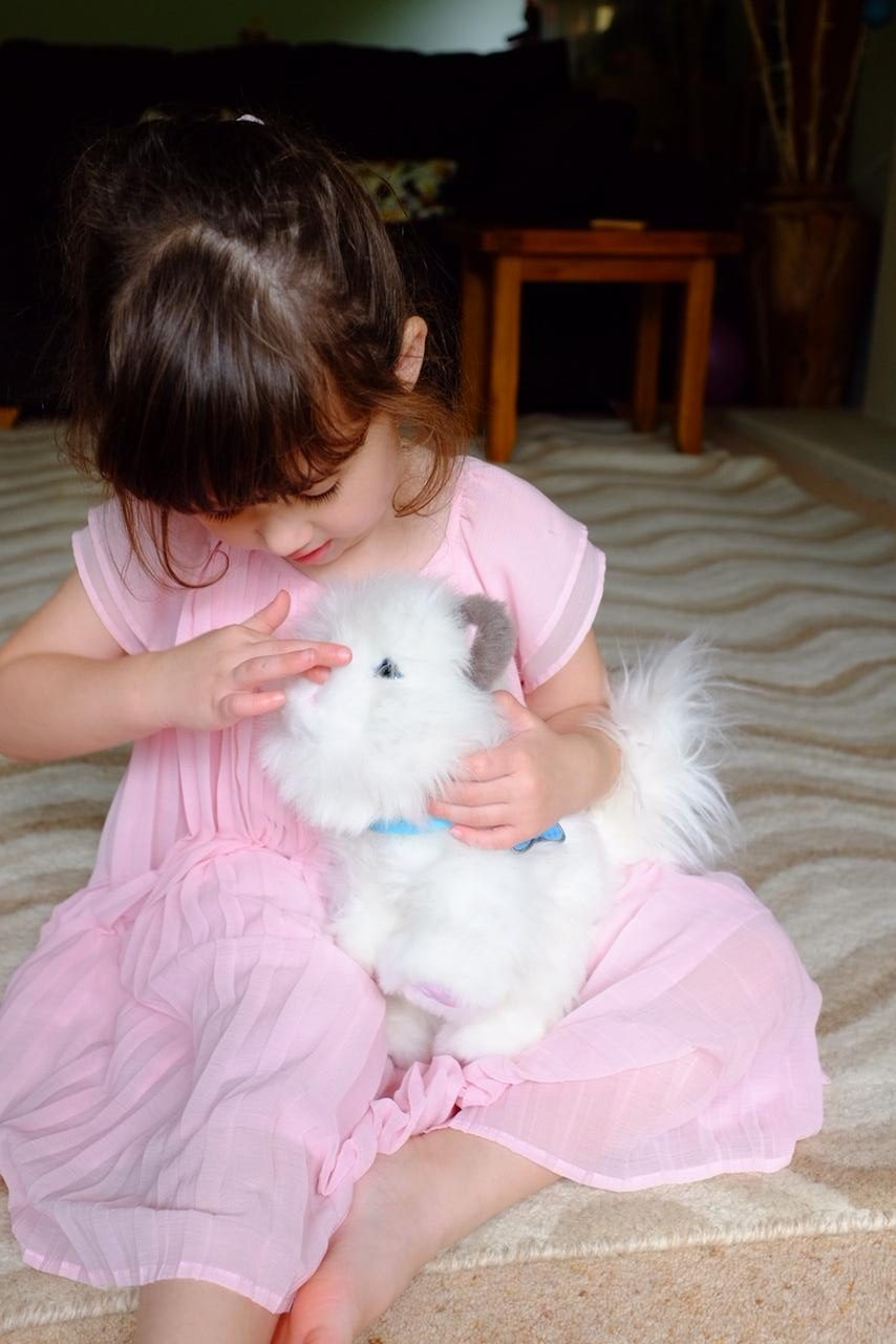 Girl playing with the nose of Little Lives Kitten Cuddles