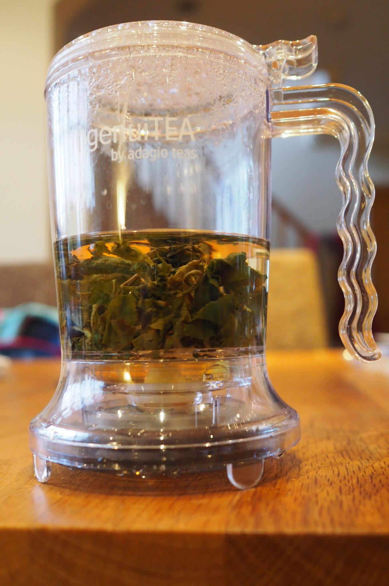 tea infusing in adagio tea maker