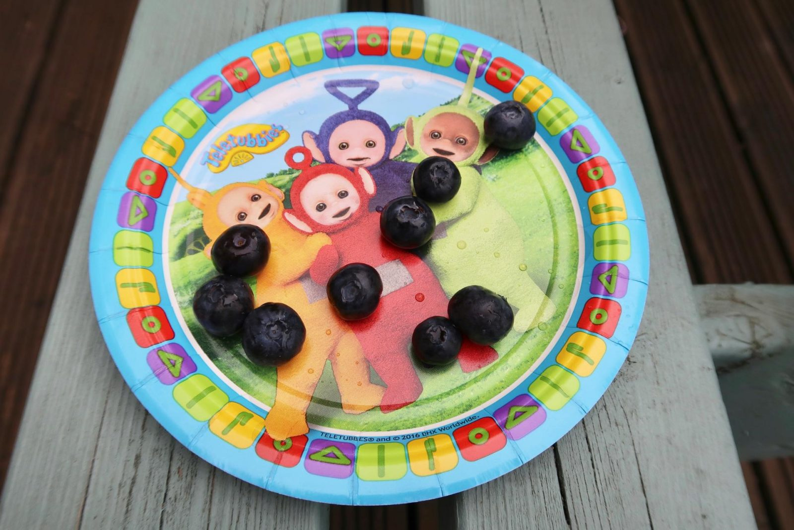 blueberries on a tellytubby paper plate