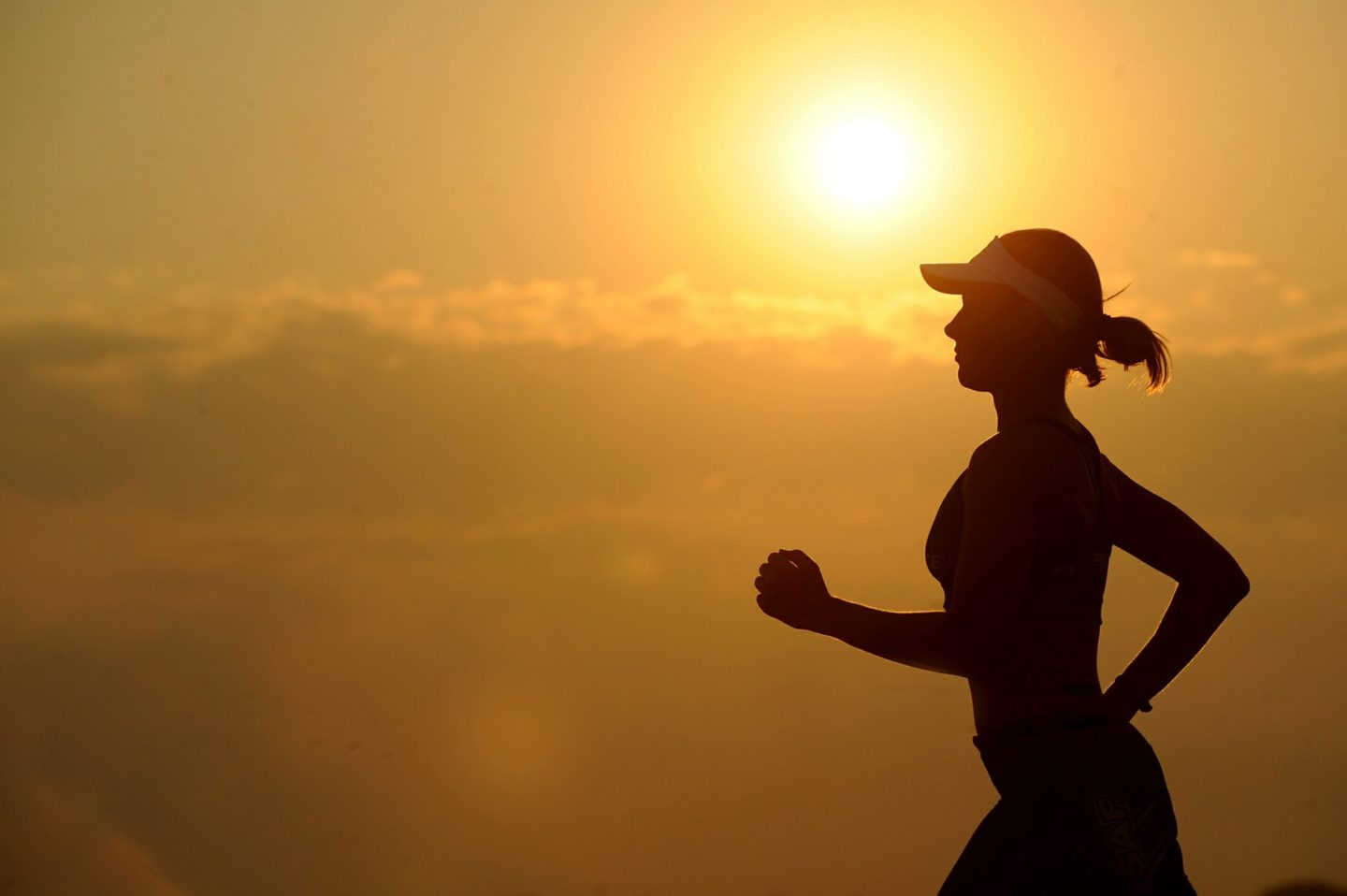 Turn Your Love Of Fitness Into A Rewarding Career