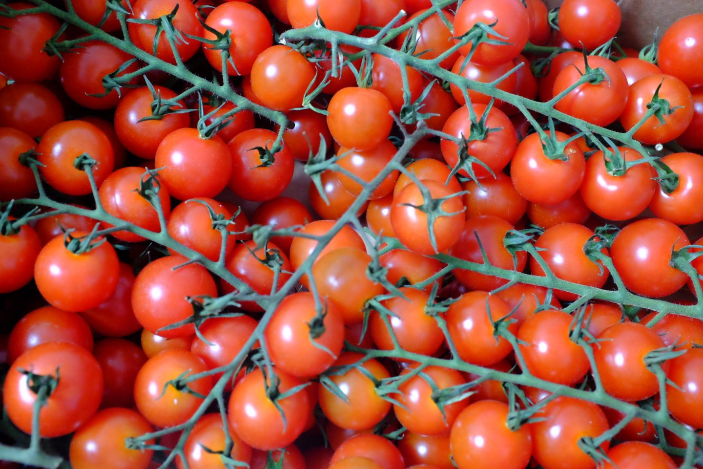 tomatoes - look after my health