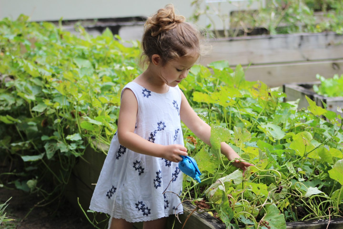3 Fun Garden Activities That Kids Will Love