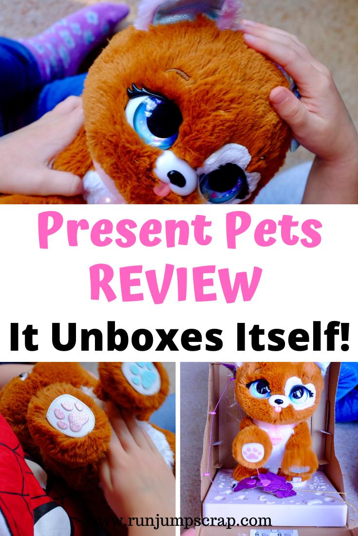 present pets review - it unboxes itself