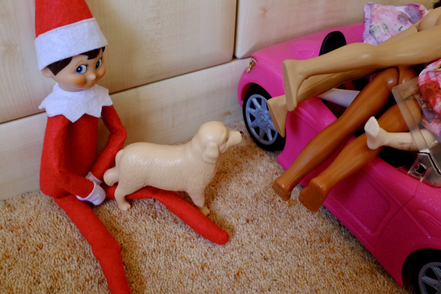 Elf walks the dog - naughty Elf ideas