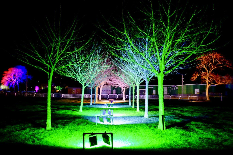 lit up trees malvern winter glow