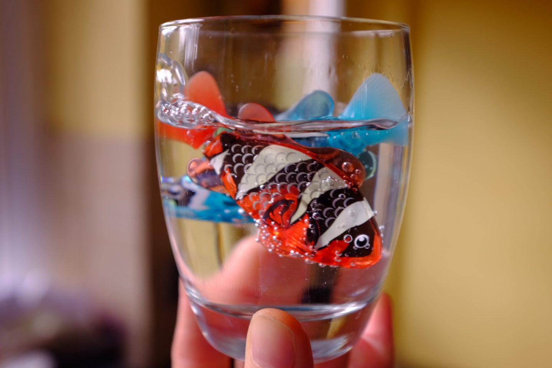 robo fish in a glass