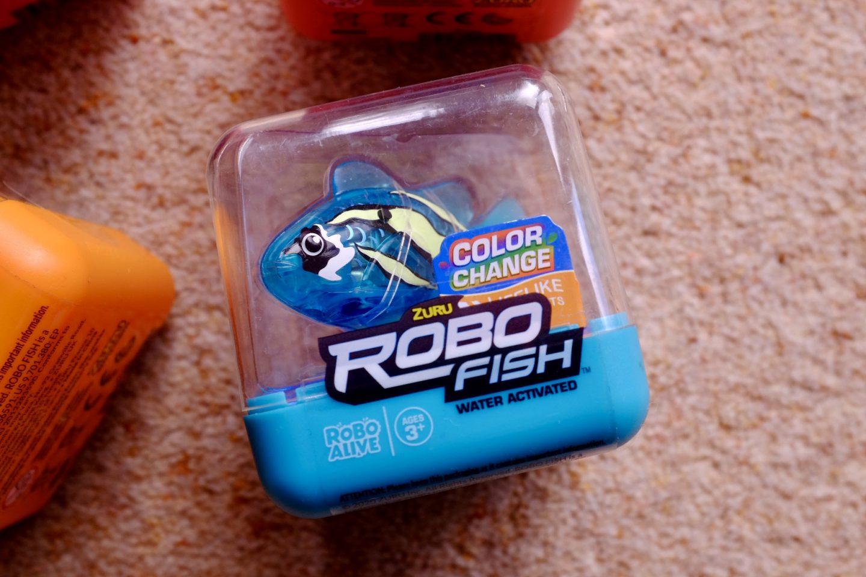 robo fish in the box