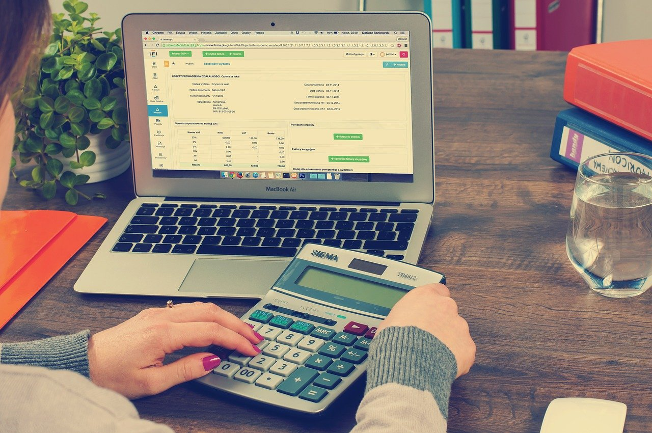 Do You Really Need A Professional Accountant To Do Your Business Taxes?